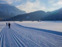 Беговые лыжи в зиме, Оберстдорфе, Allgau, Германии Стоковые Изображения RF