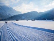 Беговые лыжи в зиме, Оберстдорфе, Allgau, Германии Стоковая Фотография