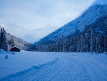 Беговые лыжи в зиме, долине Spielmannsau, Оберстдорфе, Allgau, Германии Стоковое Изображение RF