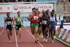 бегунки 1500 метров Стоковое фото RF