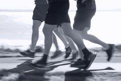 бегунки ontario ottawa марафона Канады Стоковые Фотографии RF