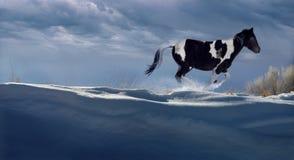 бегунок зимний Стоковая Фотография RF
