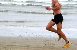 бегунок Стоковая Фотография