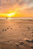 Бегуны на пляже на восходе солнца стоковое фото rf