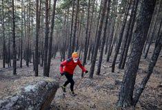 бегун в лесе стоковая фотография rf
