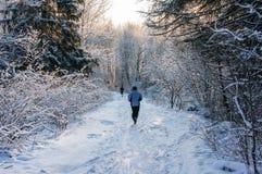 Бегун зимы Стоковое фото RF