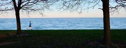 Бегун на пути прибрежной полосы озера между 2 деревьями Стоковая Фотография RF
