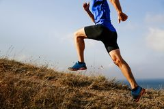 бегун спортсмена человека Стоковое фото RF