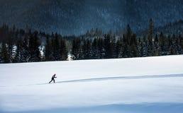 Бегун лыжи в Tatras. Стоковые Фото