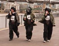 бег гориллы большой стоковые фотографии rf