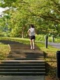 бег раннего утра Стоковые Фотографии RF