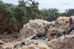 Бедствие экологичности и загрязнение природы, пластичного decomp отброса Стоковые Изображения