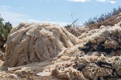 Бедствие экологичности и загрязнение природы, пластичного decomp отброса Стоковые Фотографии RF