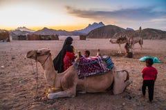 Бедуины в пустыне Сахары стоковая фотография