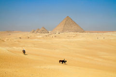 Бедуин Стоковые Изображения