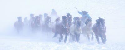 Беды снега стоковое фото rf
