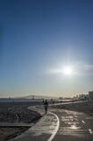 Бежать вдоль дороги около Seashore в утре Стоковое Изображение RF