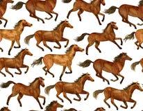 бежать лошадей Стоковые Изображения
