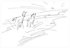 Бежать лошади - утро лета иллюстрация штока
