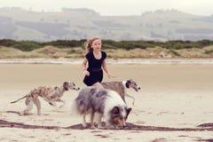 бежать собак ребенка Стоковые Изображения
