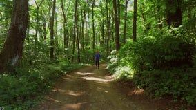 Бежать jogging в тренировке женщины леса, ходе, jogging, фитнесе, видео runner-4k сток-видео
