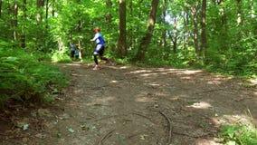 Бежать jogging в тренировке женщины леса, ходе, jogging, фитнесе, видео runner-4k акции видеоматериалы