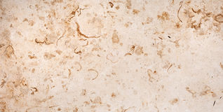 Бежевая мраморная плитка Стоковое Изображение