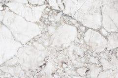 Бежевая текстура предпосылки мраморной стены Текстура в форме сети стоковая фотография