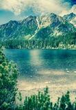 безмолвие места природы ландшафта озера рыболова красотки Стоковое Изображение