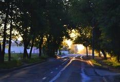 Безмолвие утра Стоковое Изображение RF