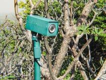 Безопасность камеры CCTV спрятанная в кустах Стоковые Изображения RF