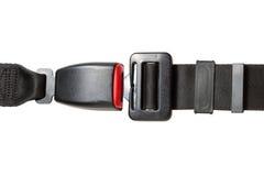 безопасность пояса Стоковая Фотография