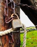 безопасность родины Стоковое Изображение RF