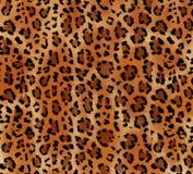 Безшовная абстрактная картина на текстуре леопарда кожи, змейка стоковая фотография rf