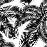 Безшовная ладонь цвета выходит картина Плоский стиль черная белизна Стоковое фото RF