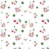 Безшовная белая предпосылка с красным цветом и вишня быстро увеличиваются Стоковое Изображение RF
