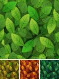 Безшовная весна и приправляет листья иллюстрация вектора