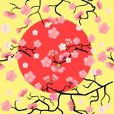 Безшовная ветвь вишни картины с вишневым цветом Стоковые Изображения