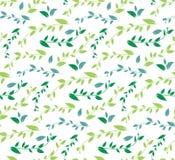 Безшовная геометрическая картина с флористической предпосылкой Стоковое Изображение RF