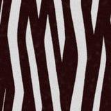 безшовная зебра текстуры кожи Стоковая Фотография