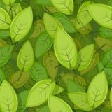 Безшовная зеленая весна выходит предпосылка бесплатная иллюстрация