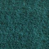 Безшовная зеленая губка scrub текстура Стоковые Изображения RF