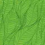 Безшовная зеленая картина с абстрактными линейными листьями Стоковые Фотографии RF