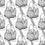 Безшовная иллюстрация вектора цветочного узора Стоковая Фотография RF