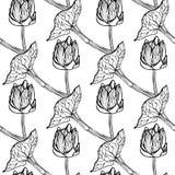 Безшовная иллюстрация вектора цветочного узора Стоковые Фото