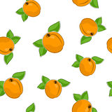 Безшовная картина абрикоса Стоковое Фото
