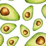 Безшовная картина авокадоа акварели на белой предпосылке бесплатная иллюстрация