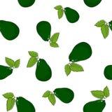 Безшовная картина авокадоа Стоковое Изображение