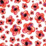 Безшовная картина акварели красных цветков на белой предпосылке Иллюстрация вектора