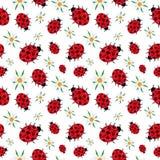 Безшовная картина белизны ladybugs и маргариток иллюстрация штока